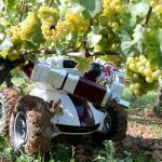 """Jornada """"El Papel de las Nuevas Tecnologías en la Agricultura"""""""