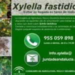 Cartel informativo sobre Xylella fastidiosa que nos hacen llegar de la Consejería de Agricultura, Pesca y Desarrollo Rural